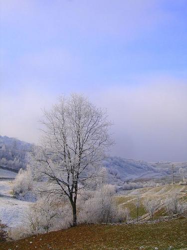 rumania-invierno.jpg
