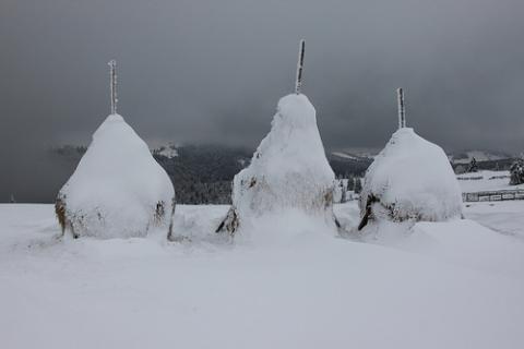rumania-nevada.jpg