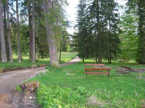 naturaleza-rumania.JPG